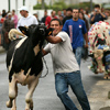 Azorské ostrovy – svátek fotografie: II.