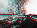 3D snímek (2)