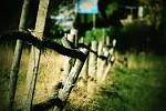 Opilý plot