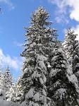 Zima Na Vysočině