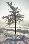 Krása Zimy