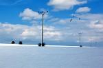 Pole v zimě