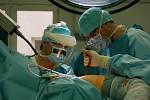 Totální endoprotéza