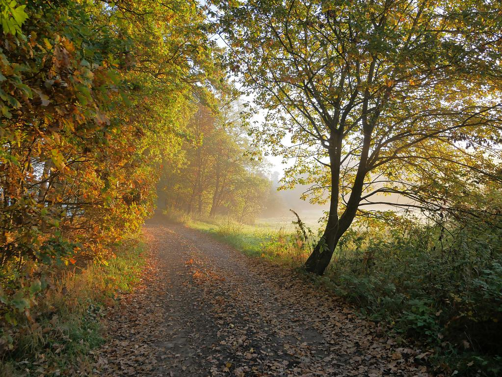 Barvy podzimu 1