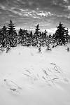Zamračený zimní den