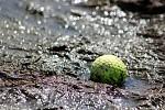 Utopený míček