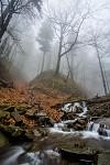Bučací potok