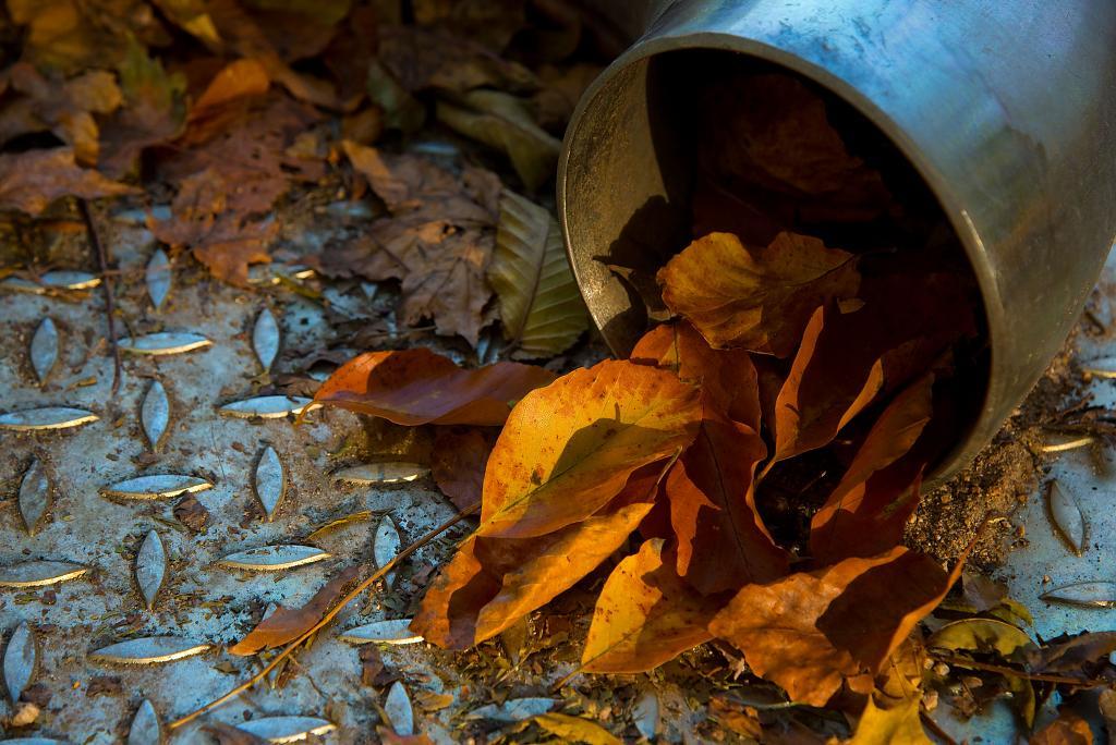 Tudy se sem valí podzim