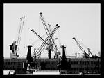 Přístav Genova