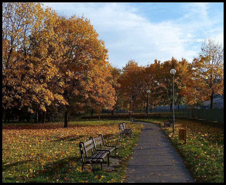 Jeseň v Bratislave 1