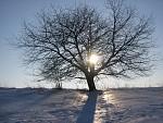Zima v Ostravě - 3
