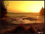 ranní probuzení na blatech...