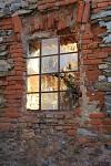 Window 2009