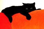 Černej kocour