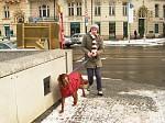 psík v zimním kabátku