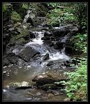 V údolí Doubravy-Kamenný potok