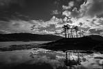 Loch Moidart po ránu