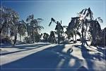Zima čarovná