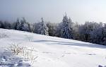 Mrazivá zima
