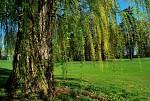 Golf Šilheřovice