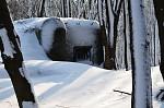 Historie v zimě