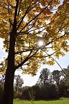Podzim naplno