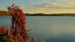 V podzimním hávu