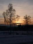 Zimní příroda kouzlí