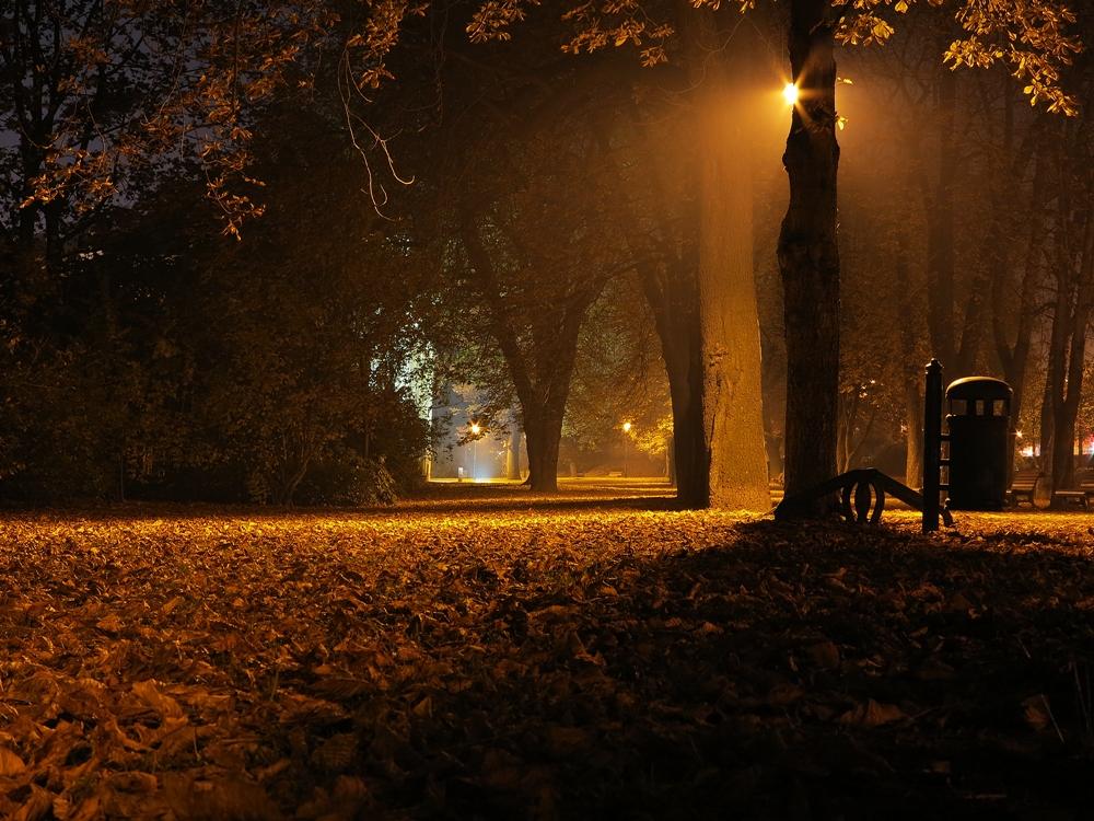 Podzimní večer v parku