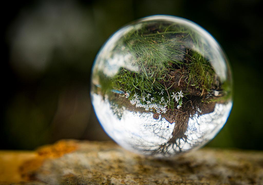 Glass Ball Photography 4