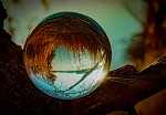 Glass Ball Photography