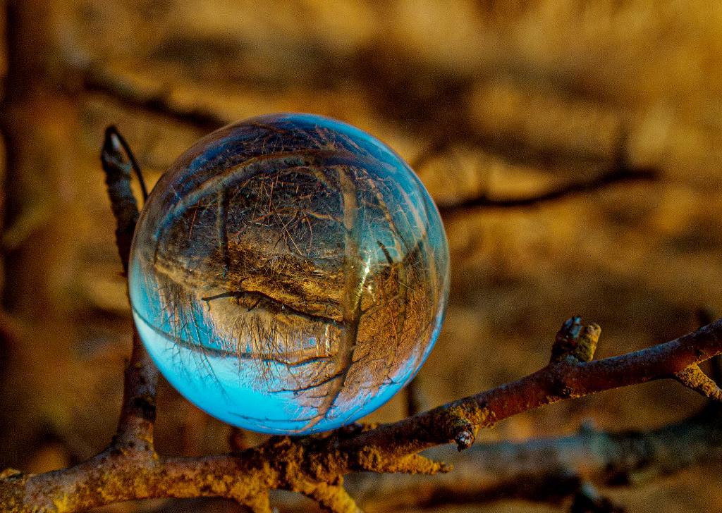 Glass Ball Photography II