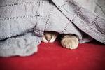 Pod dekou je nejlépe