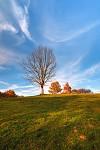 ...podzimní zastavení na louce...