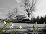 Vyhlížení jara