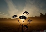 Východ slunce 2