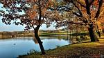 Podzim u rybníka