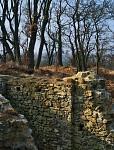 Nový hrad krále Václava IV (2)