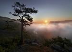 Údolí mlhy