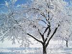...útok zimy :)