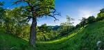 Strážovské lesostepy