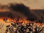 FujiFilm HS20EXR - sunset