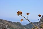 Na Samosu v horách