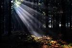 Poslední světlo