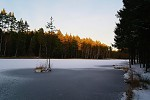 Zima u rybníka