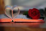 román pro ženy