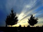 Večerní obloha