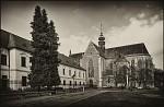 Bazilika Nanebevzetí Panny Marie na Starém Brně- BW