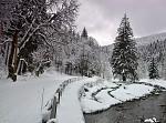 Cesta za kouzlem zimy