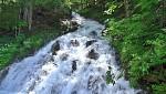 Horský potok v Gosau
